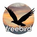 Bill Nelson (freebird54)